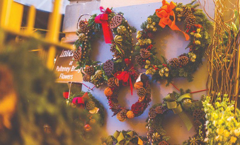 Anemone   Christmas displays