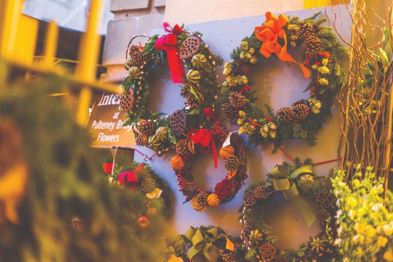 Anemone | Christmas displays