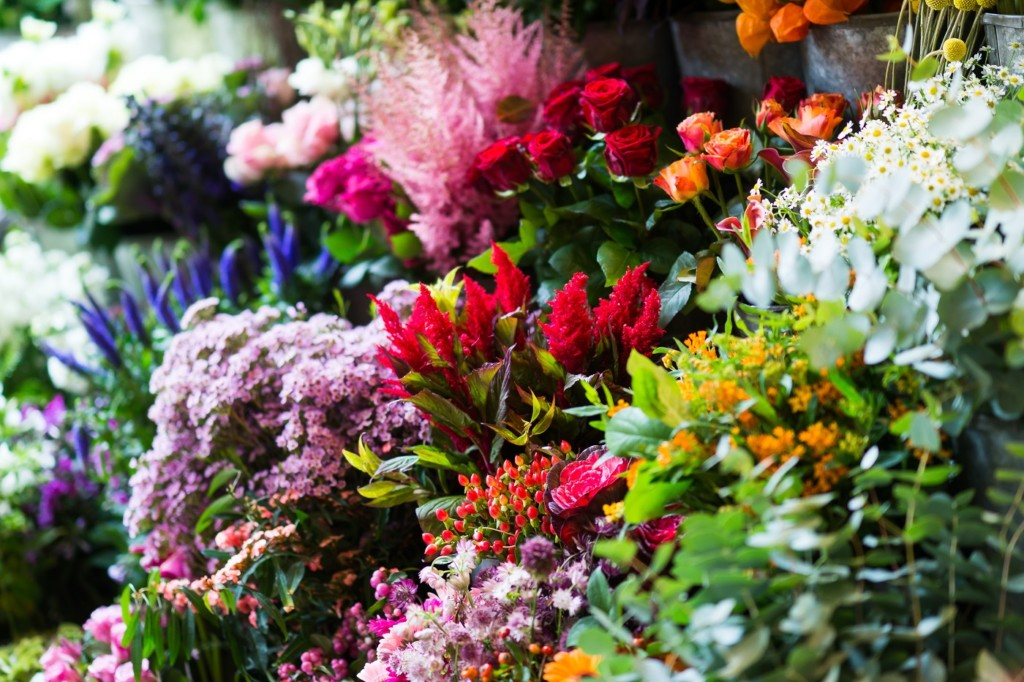 Anemone florists in Milsom Place