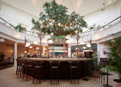 Why we love... The Botanist