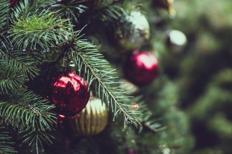 The Botanist | Christmas menu