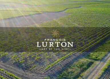 Le Vignoble | Virtual Wine Tasting with Francois Lurton Wines